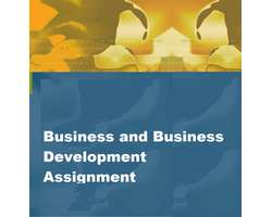 Business and Business Development Assignment