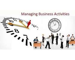 Unit 15 Managing Business Activities Assignment Sample