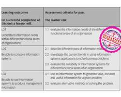 Unit 30 Information Systems in Organisations Assignment