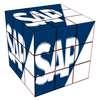 CIS52005 SAP System Security Assignment