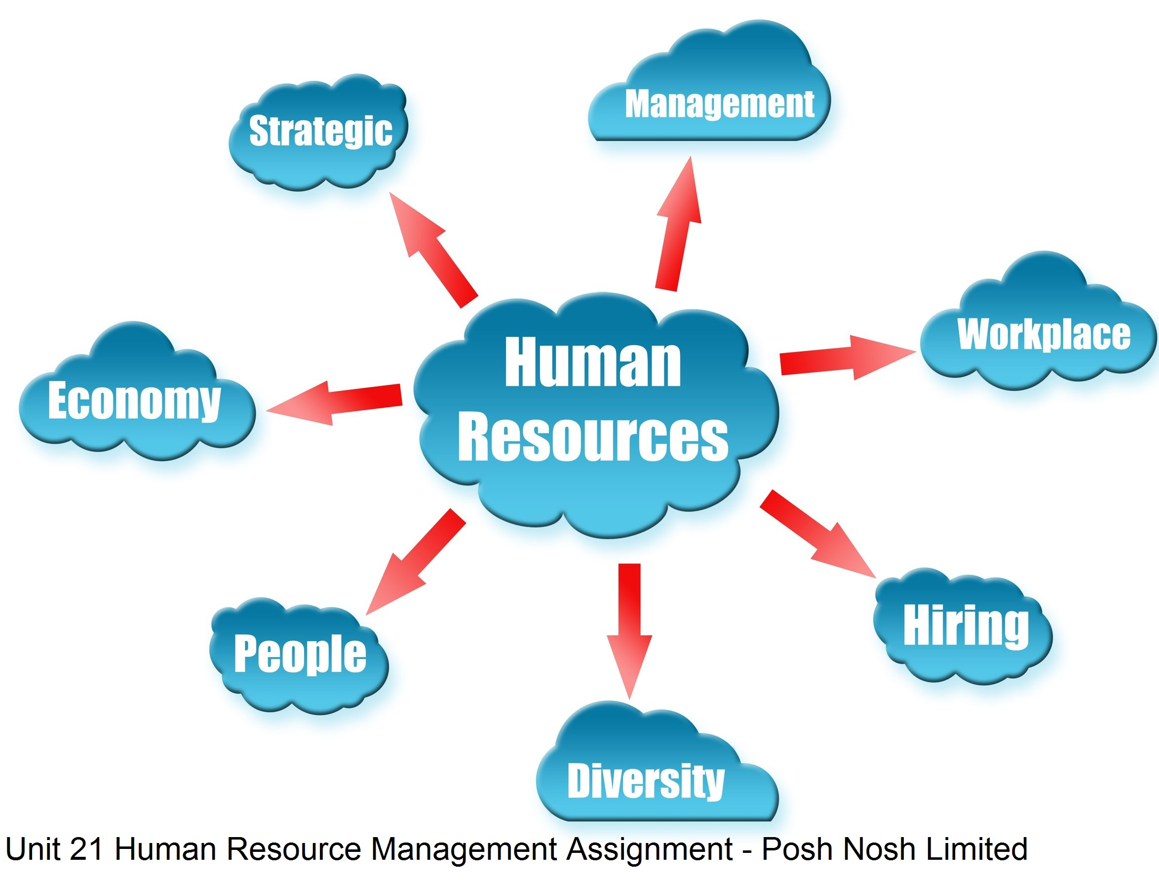 hnd unit human resource management assignment posh nosh limited