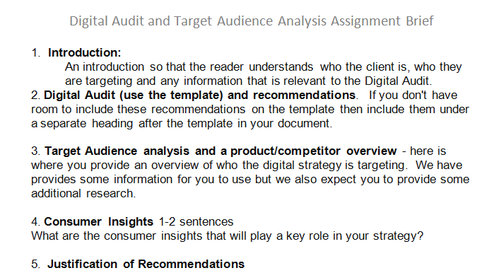 digital audit target audience analysis assignment brief 10 off