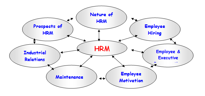 explain guets model of hard soft loose tight dimentions hrm The warwick model of hrm aoife lennon, mark hughes, tracey gorman, jamie mcphillips, niall fanning, iulia rosu, eddie mccauley outer context the hrm model.