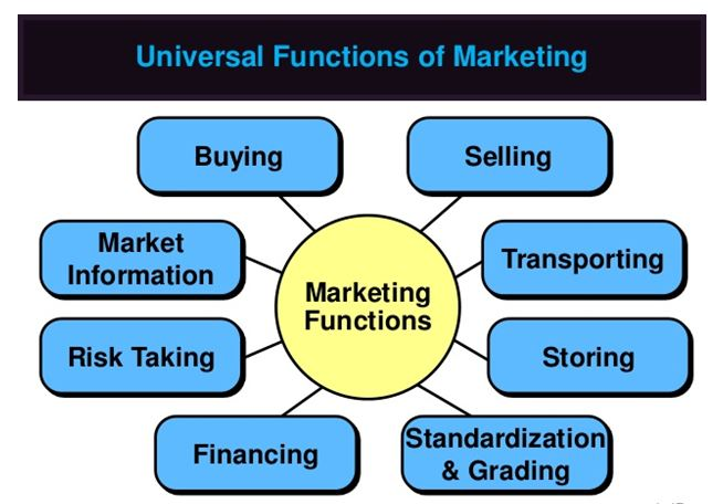 Unit 2 Marketing Essentials Assignment Solution1