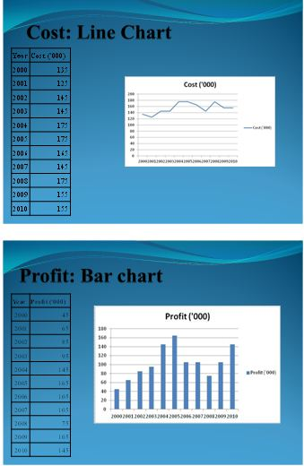 Presentation on sales and profit 3