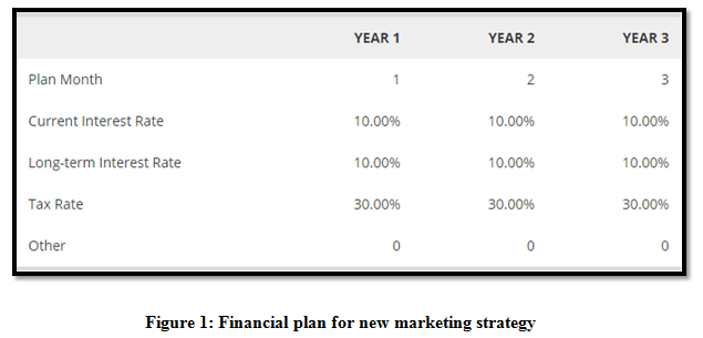Financial plan for new marketing strategy