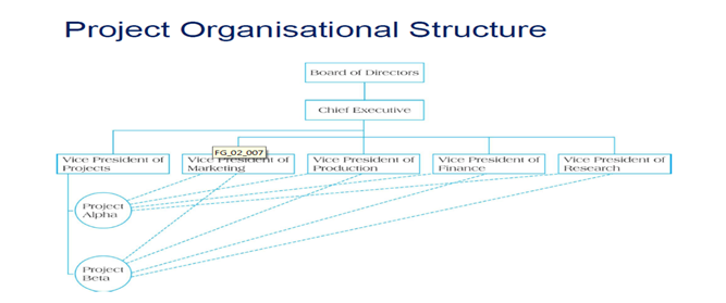 Project Organisational structure