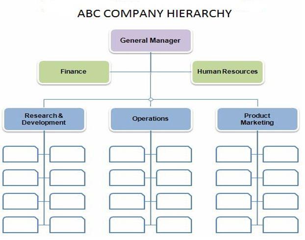 ABC Company Hierarchy