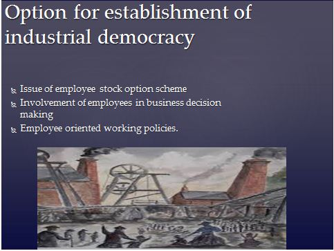 Industrial Democracy Presentation Slide 3