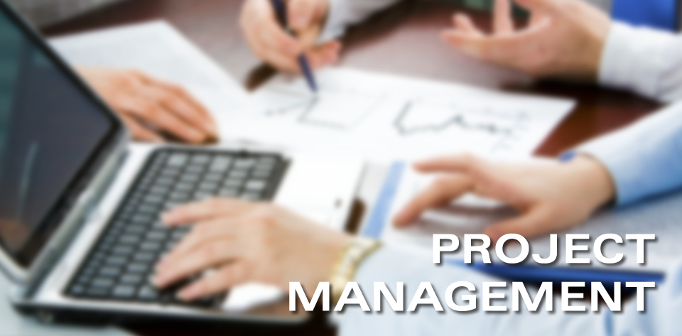 PROJ6000 Principles Project Management Assignment help