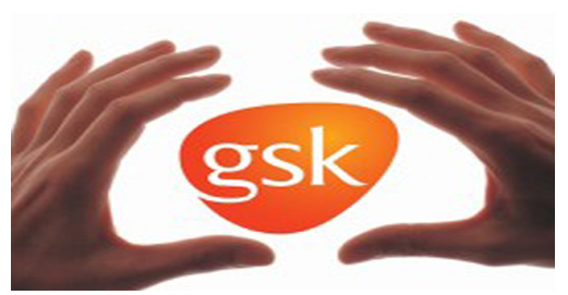 Unit 3 organisations and behaviour assignment gsk 1, uk assignment writing service