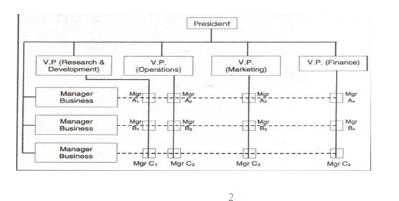 Matrix organisational structure,  uk assignment writing service