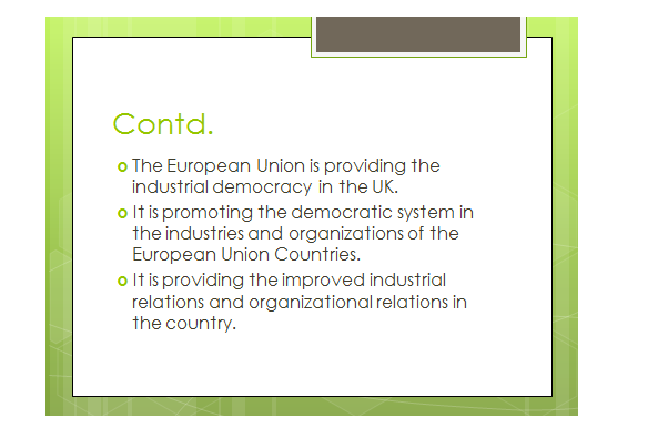 EU on industrial democracy slide 3, Uk assignment writing service
