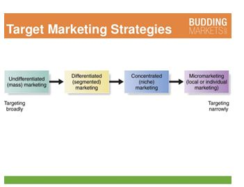 Target of marketing Strategy