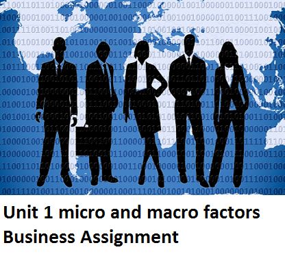 Unit 1 micro macro factors Business Assignment