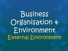 Unit 19 External Business Environment Assignment - Uk Assignment Writing Service