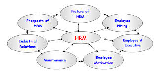 Unit 3 Guests model of HRM Assignment - Uk Assignment Writing Service