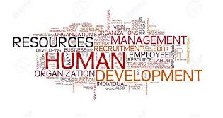 Human Organisation Development