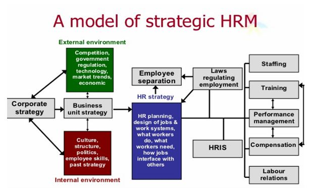 explain the relationship between strategic management and human resource management business essay To understand the strategic human resource management two-way relationship between overall business strategies essay uk, strategic human resource.