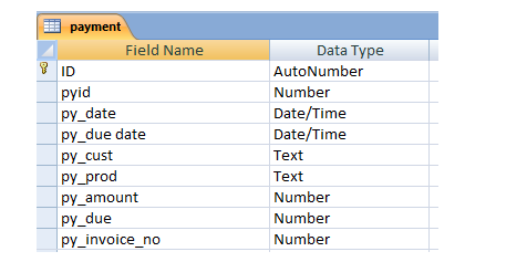 Payment table with data types