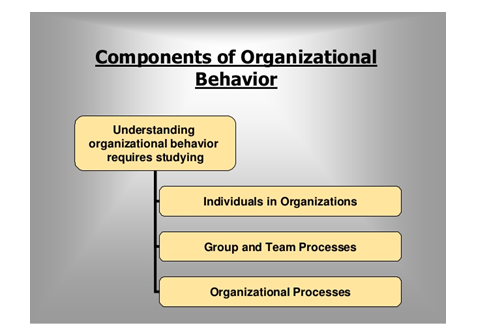 organizational behavior my company Organizational behavior is the study of both group and in order to understand individuals in an organizational company controller education.