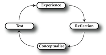 Learning cycle in Kolb's model