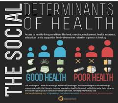 Public Health in Health and Social Care Assignment