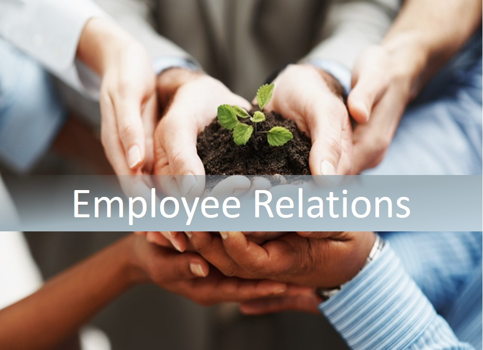 Unit 20 Employee Relation Assignment Copy