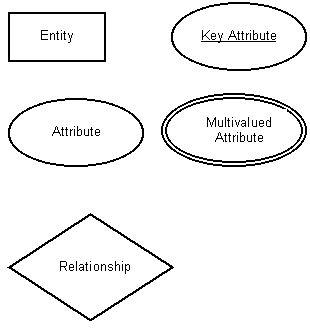 ER Diagram Components