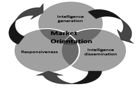 Features of Market Orientation