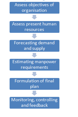 stages involved in planning human resource requirements.