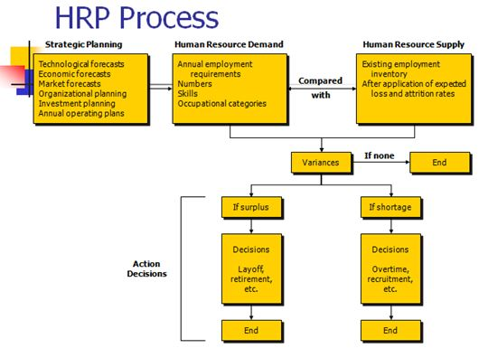 Human Resource Management Functions Assignment