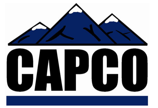 Unit 3 Organisation and Behaviour Assignment CAPCO - Assignment help in uk