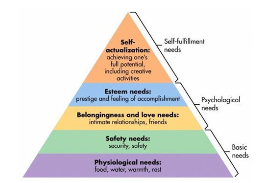 Maslow's Hierarchy | Assignment Writing Service