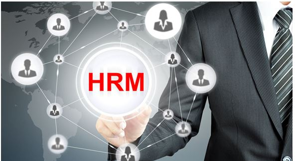 HRM | Assignment Writing Service