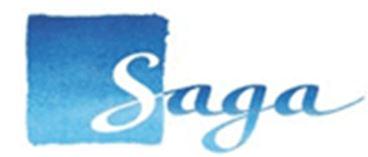 Saga | Assignment Writing Service