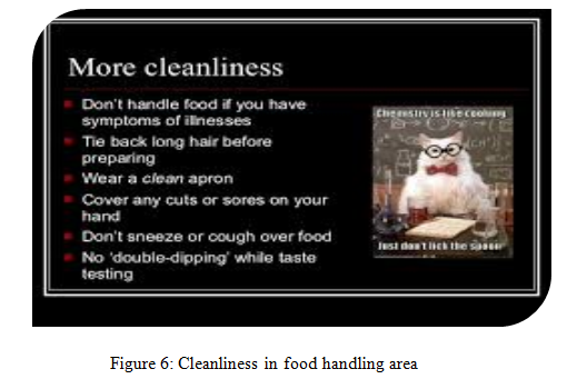 Cleanliness in food handling area - Assignment Help in UK