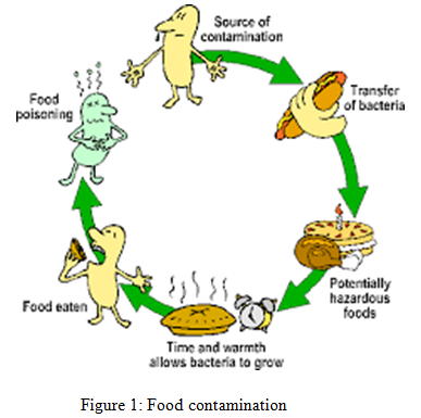 Food contamination - Assignment Help in UK