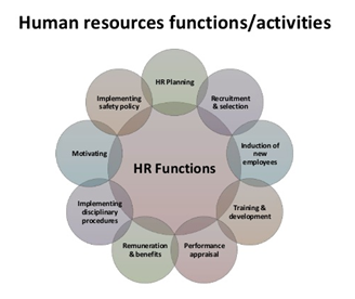 hrm functions and activities - Assignment Help in UK