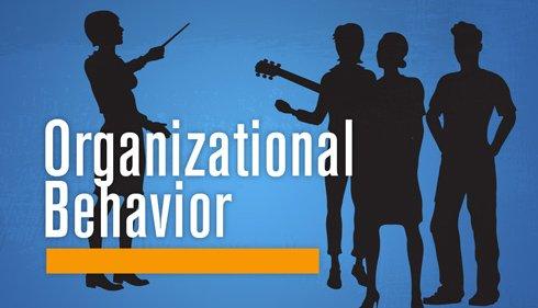Unit 3 Organisations & Behavior Assignment CAPCO - Assignment Help in UK