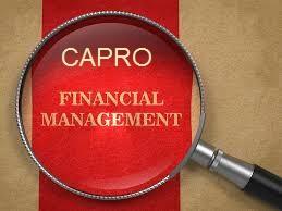 Unit 3 Organisations Behaviour Assignment CAPRO - Assignment Help
