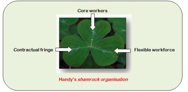handy's shamrock organisation - Assignment Help in UK