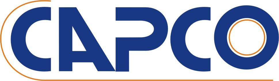 Unit 3 Organization & Behavior Assignment CAPCO Ltd - Assignment Help in UK