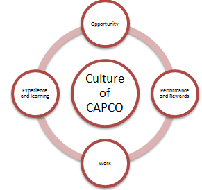 Unit 3 Organization Behaviour Assignment CAPCO & Tesco 3