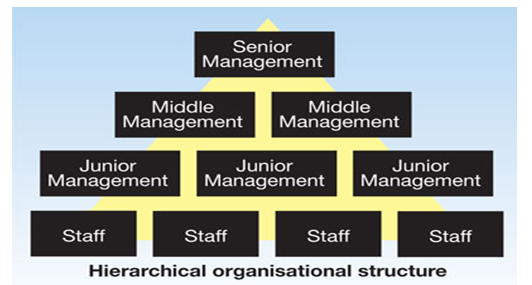 Hierarchical organisational structure - Assignment Help in UK