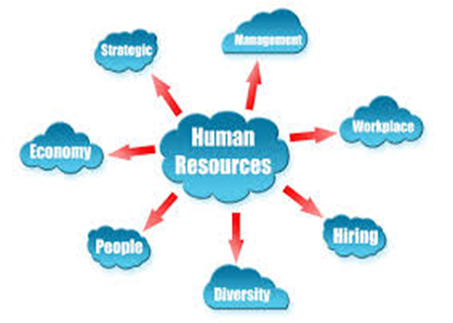 human resources - Assignment Help in UK