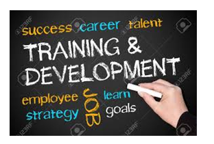 training and development - Assignment Help in UK