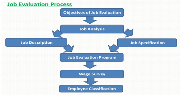 job evalution process - Assignment Help in UK