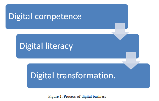 Process of digital business