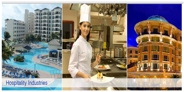 Hospitality Provision in TT Sector - Assignment Help in UK